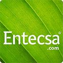 Logo Entecsa